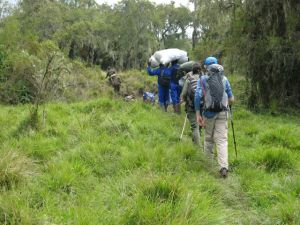 Josh and our team of Emmanuelle (Park Guide) and porters trekking to Karisimbi camp site