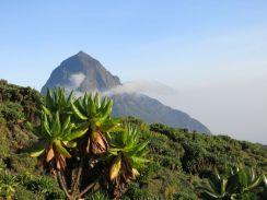 Rwanda 2013-193